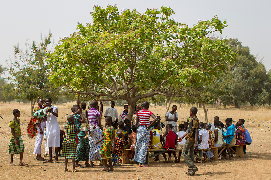 A sunday school takes place under the shade of a tree outside the Martyrs of Uganda Parish church in the village of Manyoro, in the Bolgatanga municipality of North Eastern Ghana...Ghana 22 January 2012.