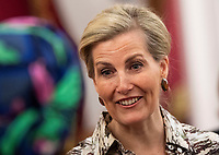 03 March 2019 - Sophie Countess of Wessex during a reception at Buckingham Palace for Women Peacebuilders on International Womens Day London. Photo Credit: ALPR/AdMedia