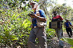 Proyecto Titi team performing Cotton-top tamarin census in Colombia's dry tropical forest.