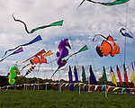 Flags decorate the entrance to the annual balloon festival at Long Branch Farm, Winchester, Virginia, USA.  © RickCollier
