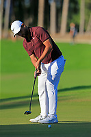 Alexander Levy (FRA) putts on the 17th green during Saturday's Round 3 of the 2018 Turkish Airlines Open hosted by Regnum Carya Golf &amp; Spa Resort, Antalya, Turkey. 3rd November 2018.<br /> Picture: Eoin Clarke | Golffile<br /> <br /> <br /> All photos usage must carry mandatory copyright credit (&copy; Golffile | Eoin Clarke)