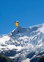 CHE, Schweiz, Kanton Bern, Berner Oberland, Grindelwald: Paraglider vorm Unteren Grindelwaldgletscher | CHE, Switzerland, Bern Canton, Bernese Oberland, Grindelwald: Paraglider and Lower Grindelwald Glacier