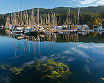 British Columbia, Canada<br /> View of boats in Ganges Harbor, Saltspring Island. Canadian Gulf Islands