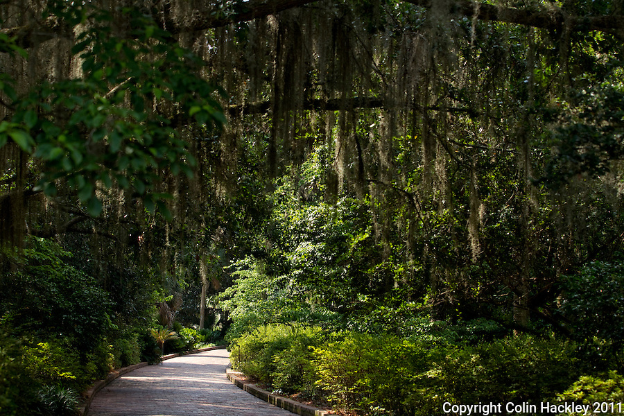 ALFRED B. MACLAY GARDENS STATE PARK: A brick path leads you to and from the house..COLIN HACKLEY PHOTO