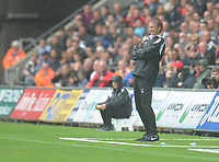 Swansea City manager Graham Potter watches on from the touchline<br /> <br /> Photographer Kevin Barnes/CameraSport<br /> <br /> The EFL Sky Bet Championship - Swansea City v Preston North End - Saturday August 11th 2018 - Liberty Stadium - Swansea<br /> <br /> World Copyright &copy; 2018 CameraSport. All rights reserved. 43 Linden Ave. Countesthorpe. Leicester. England. LE8 5PG - Tel: +44 (0) 116 277 4147 - admin@camerasport.com - www.camerasport.com