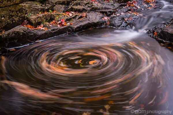 Fall leaves swirling around at the base of a small waterfall