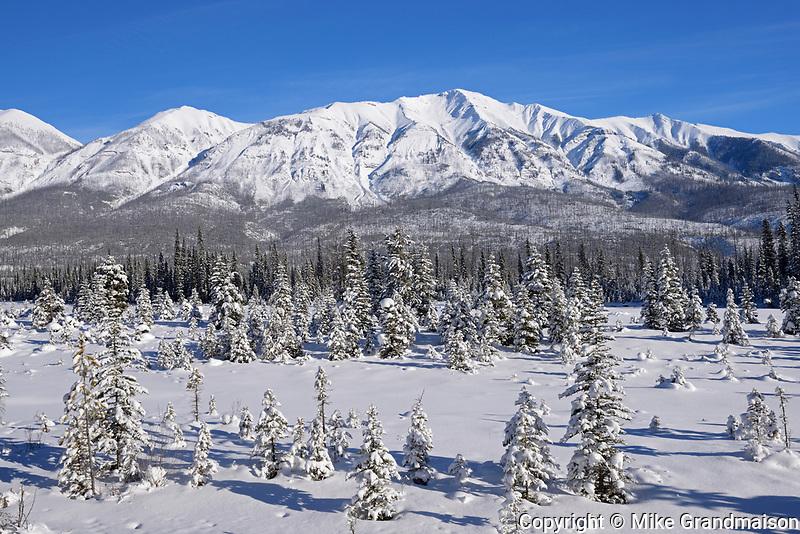 The MItchell Range (Canadian Rocky Mountains), Kootenay National Park, British Columbia, Canada