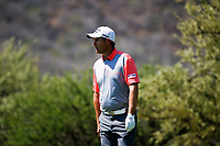 Padraig Harrington (IRL) during the 3rd round at the Nedbank Golf Challenge hosted by Gary Player,  Gary Player country Club, Sun City, Rustenburg, South Africa. 10/11/2018 <br /> Picture: Golffile | Tyrone Winfield<br /> <br /> <br /> All photo usage must carry mandatory copyright credit (&copy; Golffile | Tyrone Winfield)