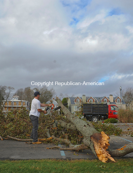OLD SAYBROOK, CT-30 OCTOBER 2012--103012JS02-in Old Saybrook on Tuesday. . Jim Shannon Republican-AmericanOLD SAYBROOK, CT-30 OCTOBER 2012--103012JS05- A worker clears a downed tree in the parking lot of the  Saybrook Point Inn and Spa in Old Saybrook after storm Sandy came ashore late Monday. . Jim Shannon Republican-American