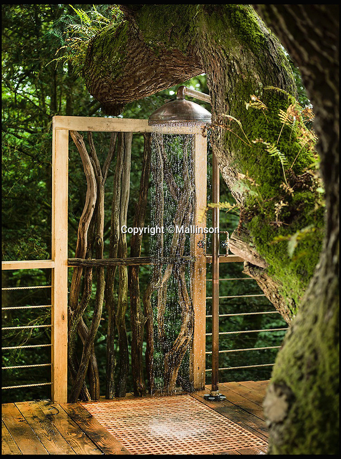 BNPS.co.uk (01202 558833)<br /> Pic: Mallinson/BNPS<br /> <br /> Shower in the treetop...<br /> <br /> Release your inner Tarzan...in Britain's poshest treehouse.<br /> <br /> A luxury glamping site in deepest Dorset has created a luxurious treehouse that comes with its own sauna, hot tub, rotating fireplace and pizza oven.<br /> <br /> The Woodsman's Treehouse is perched 30ft from the ground on long stilts and has two floors. <br /> <br /> It has a spiral staircase and a stainless steel slide for quick access to the ground and can be rented out from £390 a night. <br /> <br /> It is located at the Crafty Camping glamping site at Holditch in west Dorset.