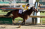 November 24, 2018 : Needs Supervision (jockey Joseph Rocco Jr., #10) wins the 5th race, an allowance optional claiming for two year old fillies at Churchill Downs, Louisville, Kentucky. Owner Howling Pigeons Farm LLC (Mike Karty), trainer Jeremiah O'Dwyer. By Paynter x Moroccan Rose (Carson City). Mary M. Meek/ESW/CSM