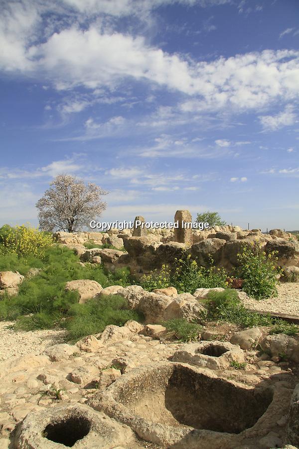 Israel, Tel Batash in the Shephelah, an Olive Press at the Biblical city Timnah