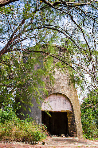 Ruins of an old sugar mill.