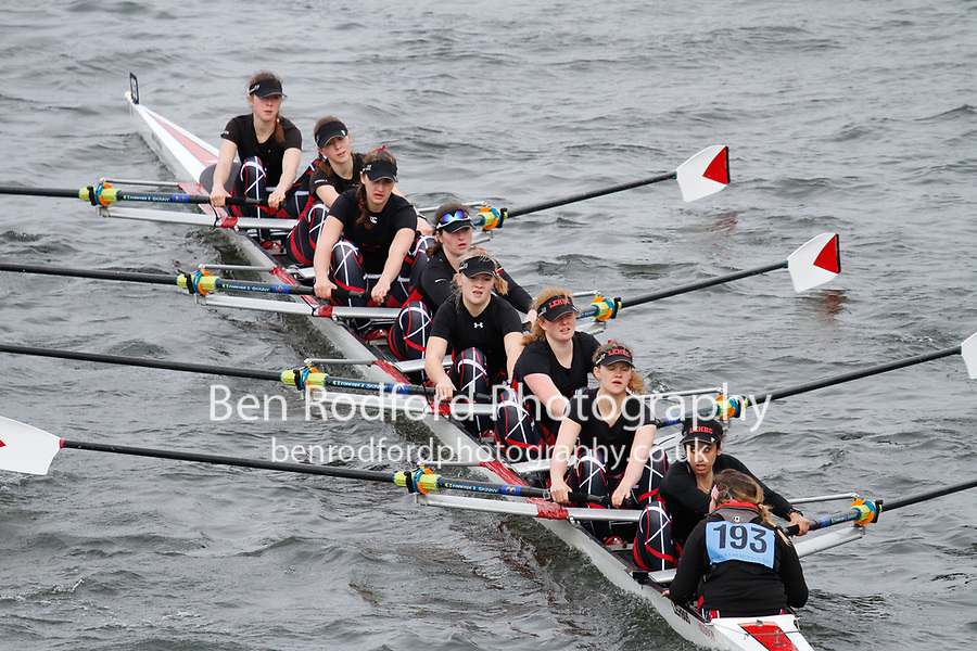 Crew: 193  Lady E Holles  Event: Girls School 1st eights<br /> <br /> Schools' Head of the River 2017<br /> <br /> To purchase this photo, or to see pricing information for Prints and Downloads, click the blue 'Add to Cart' button at the top-right of the page.