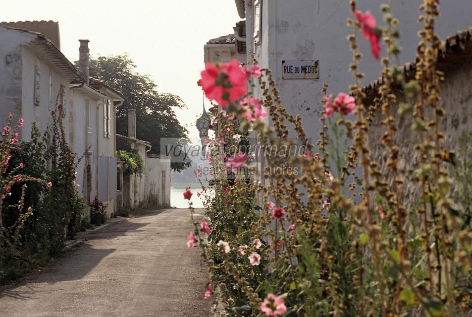 Europe/France/Poitou-Charentes/17/Charente-Maritime/Talmont: Ruelle et roses trémières