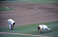 Ballparks: Boston Fenway Park--Pre-game. Tony Pena and Mike Marshall limbering up.  June 1991.