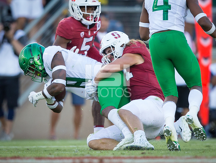 Stanford, CA - September 21, 2019: Colby Parkinson at Stanford Stadium. The Stanford Cardinal fell to the Oregon Ducks 21-6.