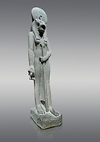 """Ancient Egyptian statue of goddess Sekhmet, grandodiorite, New Kingdom, 18th & 20thDynasty (1156-1150 BC), Thebes. Egyptian Museum, Turin. Grey Background.<br /> <br /> Sekhmet, """"the Powerful One"""" was a fearsome goddess symbolised by her lioness head. Daughter of the sun she personifies the disk of the world during the day. Sekhmet is the angry manifestation of Hathor inflicting the scourges of summer heat, famine and illness which is why the goddess needed to be exorcised every day. Drovetti Collection. C 251"""