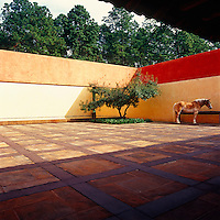 The courtyard is where horses are brought to drink and recalls the monumental patios of pre-Hispanic Mexican cities