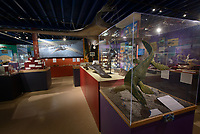 New layout and displays at the Alaska Museum of Science and Nature in Anchorage.