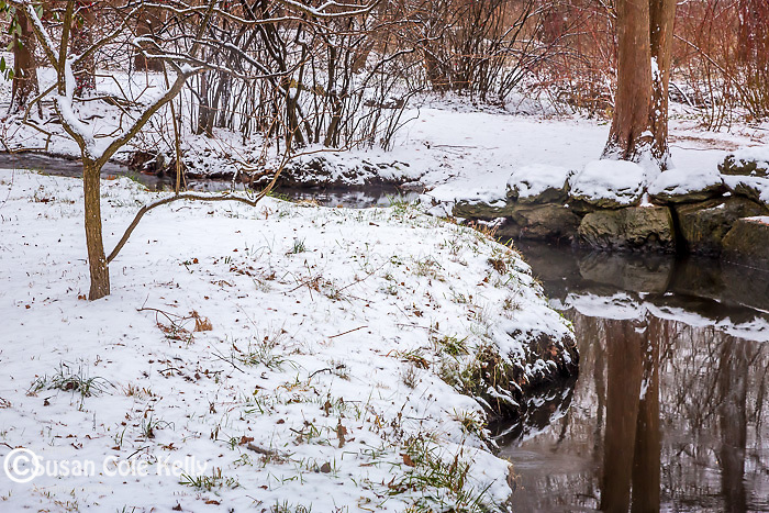 Snowy reflections at the Arnold Arboretum in the Jamaica Plain neighborhood, Boston, Massachusetts, USA