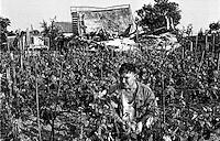 Balkan War: In the backyard of the destroyed home, Zadar, Croatia 1993