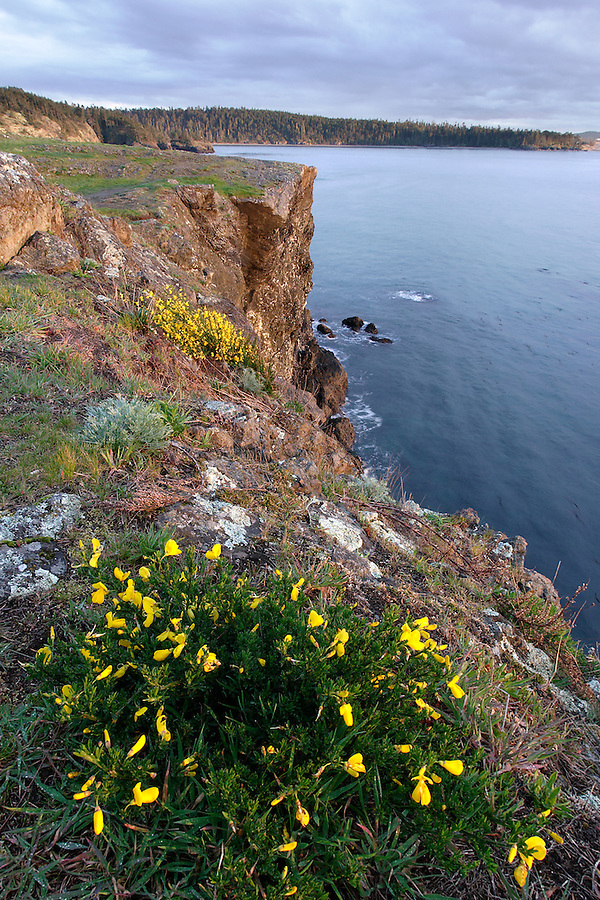 Rosario Head, Fidalgo Island, Deception Pass State Park, Island County, Washington, USA