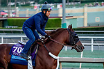 October 27, 2019 : Breeders' Cup Juvenile entrant Scabbard, trained by Eddie Kenneally, exercises in preparation for the Breeders' Cup World Championships at Santa Anita Park in Arcadia, California on October 27, 2019. John Voorhees/Eclipse Sportswire/Breeders' Cup/CSM