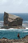 cote rocheuse et chevaux sauvages sur l'ile de Ua Huka