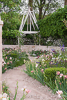 Irises, Paeonia peonies, pastel soft colors in pink theme, path walkway, wall, gazebo, spring flowers, gravel dirt path, pretty May or June backyard garden scene view