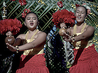 A traditional hawaiian luau for a special event. Includes the traditional aloha wear, food leis, hula dancers and performances.