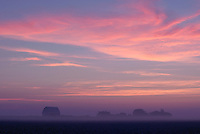 Farm at sunrise, Poweshiek County, Iowa