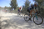 The peloton including Steven Lammertink (NED) Vital Concept-Hotels B&amp;B on sector 3 Radi during Strade Bianche 2019 running 184km from Siena to Siena, held over the white gravel roads of Tuscany, Italy. 9th March 2019.<br /> Picture: Eoin Clarke | Cyclefile<br /> <br /> <br /> All photos usage must carry mandatory copyright credit (&copy; Cyclefile | Eoin Clarke)