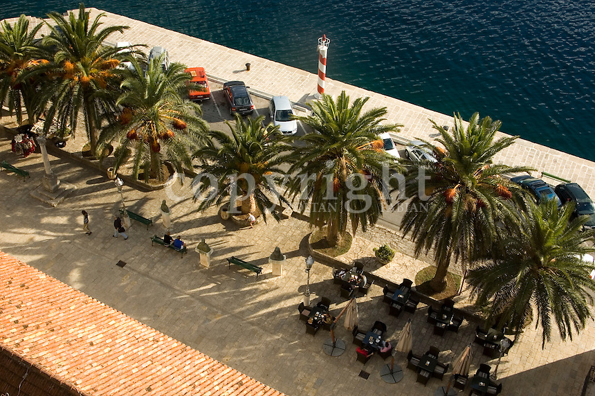 Palm trees, benches, tables, chairs in a square in Perast, Kotor Bay, Montenegro, Europe