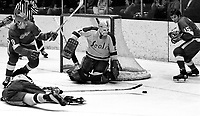 Seals vs Detroit Red Wings...goalie Gary Smith, Seal Ron Stackhouse lying on ice,Wings Jim Krulicki and #15 Al Karlander (1971 photo/Ron Riesterer)