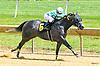 El Kracken winning at Delaware Park on 7/24/17