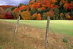 Fall foliage, St. Johnsbury, Vermont, USA