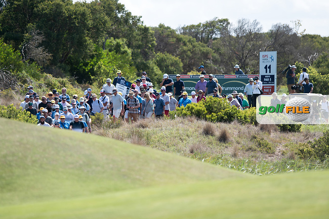 during the 2nd round of the VIC Open, 13th Beech, Barwon Heads, Victoria, Australia. 08/02/2019.<br /> Picture Anthony Powter / Golffile.ie<br /> <br /> All photo usage must carry mandatory copyright credit (© Golffile | Anthony Powter)