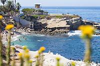 Rocky Point in La Jolla San Diego