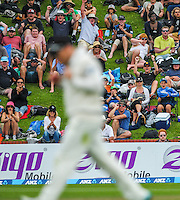 Fans celebrate Brendon McCullum's catch of Lahiru Thirimanne during day one of the 2nd cricket test match between the New Zealand Black Caps and Sri Lanka at the Hawkins Basin Reserve, Wellington, New Zealand on Saturday, 3 February 2015. Photo: Dave Lintott / lintottphoto.co.nz