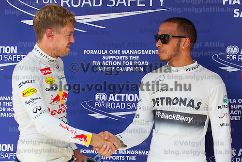 Red Bull F1 Formula One driver Sebastian Vettel (L) of Germany shakes hands in congratulation with Petronas Mercedes F1 Formula One driver Lewis Hamilton (R) of Great Britain celebrating their victory in the qualifier of the Hungarian F1 Grand Prix in Mogyorod (about 20km north-east from capital city Budapest), Hungary on July 27, 2013. ATTILA VOLGYI