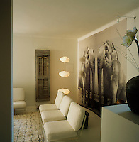 Three cushion seats rest on an acrylic base as a sofa in the contemporary living room. A large artwork of elephants hangs on the wall behind.