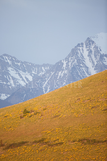 snow capped peaks of the mission mountains in western montana