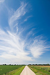 White dirt road, wispy clouds in the Sheyenne National Grassland of North Dakota.
