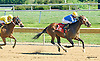 Sweet Kateri winning at Delaware Park on 9/14/15