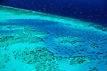 Aerial view of Arlington Reef, near Cairns.  Great Barrier Reef Marine Park, Queensland, Australia