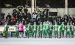 Stockholm 2014-11-26 Bandy Elitserien Hammarby IF - Bolln&auml;s GIF :  <br /> Hammarbys spelare jublar med Hammarbys supportrar efter matchen mellan Hammarby IF och Bolln&auml;s GIF <br /> (Foto: Kenta J&ouml;nsson) Nyckelord:  Elitserien Bandy Zinkensdamms IP Zinkensdamm Zinken Hammarby Bajen HIF HeIF Bolln&auml;s GIF BGIF Giffarna jubel gl&auml;dje lycka glad happy supporter fans publik supporters