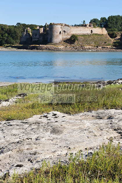 France, Côtes-d'Armor (22), Créhen, Château  Fort du Guildo, inscrit aux Monuments  // France, Cotes d'Armor, Crehen, Guildo castle, labelled historic monument