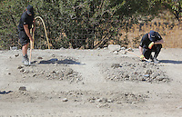Pictured: Special forensics police officers assisted with Hellenic Red Cross volunteers use rakes to search through soil in a field in Kos, Greece. Tuesday 04 October 2016<br />