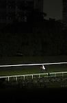 HONG KONG, CHINA - SEPTEMBER 16:  Season Link ridden by David Beadman warms up for the Race 6 during the first night of horses races of the 2009/10 seasson at the Happy Valley racecourse in Hong Kong. The coming 2009/10 racing season marks the 125th Anniversary of The Hong Kong Jockey Club, which since its establishment in 1884. Photo by Victor Fraile / The Power of Sport Images